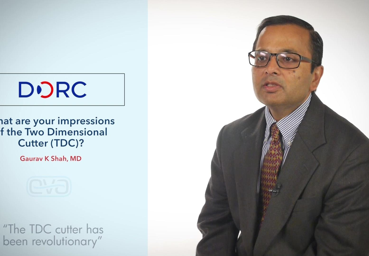 Gaurav K Shah, MD, USA, describes his experience and impression of EVA